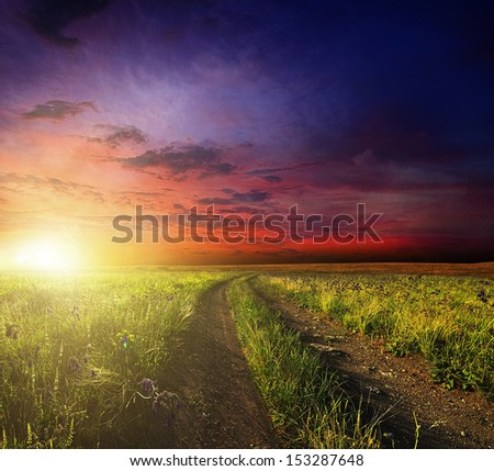 Country road through a field at sunset - stock photo