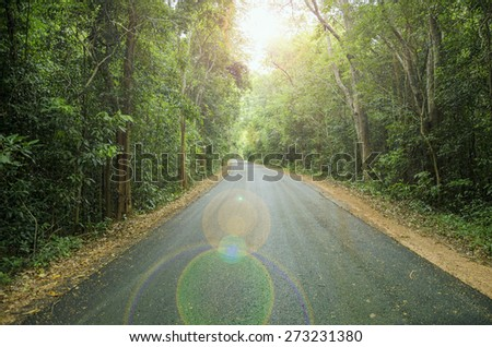 Country Road To The Jungle with Lens light effect - stock photo