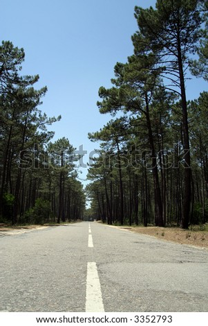 Country road with deep blue sky - stock photo