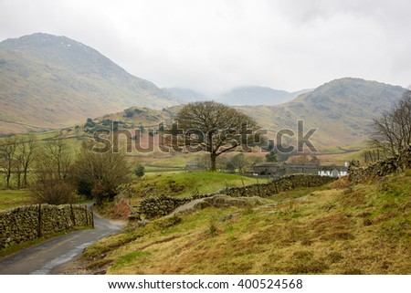 Country side landscape in Lake District, England. Old road, single oak tree, green hills and mountains. Early spring. - stock photo