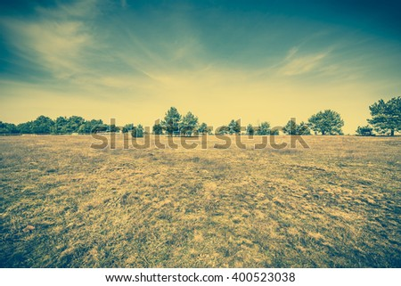 Countryside farm landscape, rural field, pasture with dry grass near forest at spring, vintage photo - stock photo