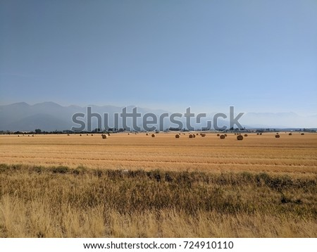 Countryside farmland in Montana