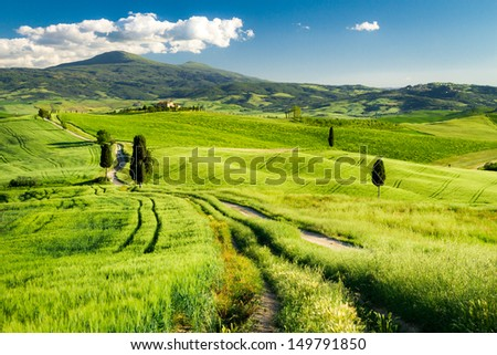Countryside footpath in Tuscany - stock photo