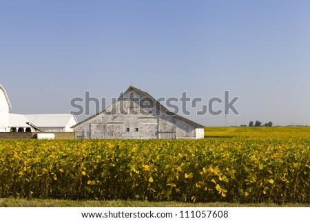 Countryside Landscape - stock photo