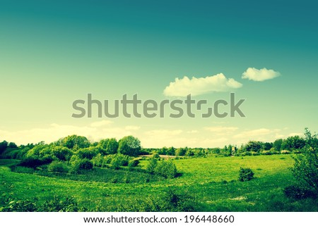 Countryside landscape with green fields - stock photo