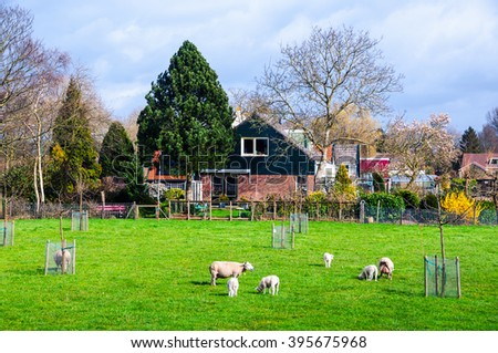 Countryside located between Utrecht and Amsterdam in Netherlands. Listed as a most important natural attraction with many castles, lakes and gardens, historical buildings and farms - stock photo