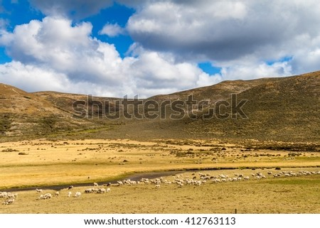 Countryside of Tierra del Fuego island, Chile