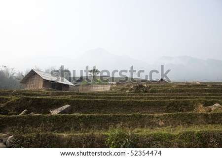 Countryside of Vietnam