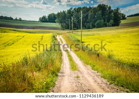 Countryside road and colorful field