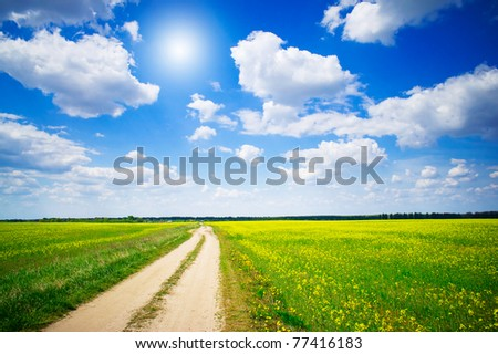 Countryside road and golden field of rapeseeds. - stock photo