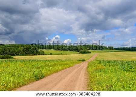 Countryside road  through fields and hills under cloudy blue sky. Corn plants are weak due to cold climate and short summer and are used as forage to feed cattle.
