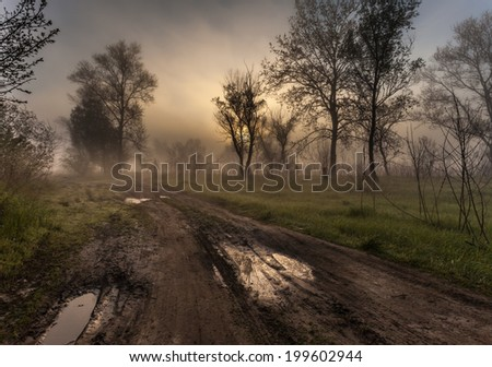 countryside road with fog in the morning - stock photo