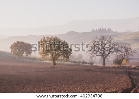 Countryside rural landscape at spring morning - stock photo