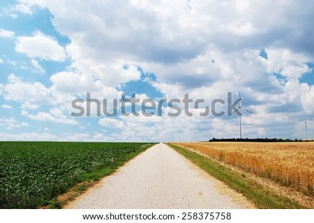 Countryside unpaved road between the fields - stock photo