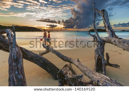 Couple and driftwood on a sandy beach at sunset, Cinnamon Bay, St. John. USVI - stock photo