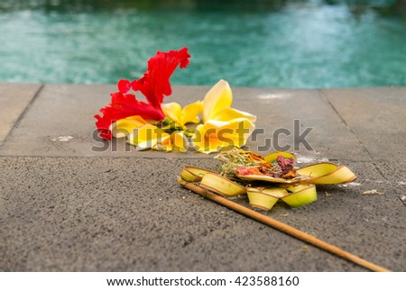 Couple Balinese colored flowers near by the swimming pool, religious offerings in Bali, Indonesia. Selective focus. - stock photo