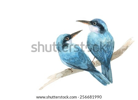 couple blue bird   painting watercolor . draw illustrations  - stock photo