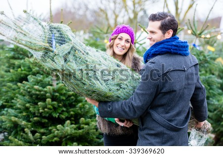 Couple carrying bought Christmas tree - stock photo