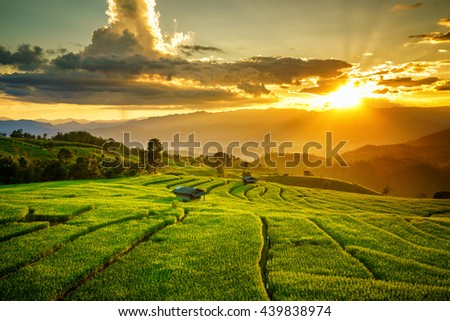 Couple cottages on green rice field at sunset in pa bong piang chiang mai thailand
