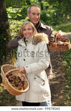 Couple gathering mushrooms in a forest - stock photo