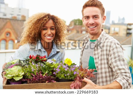 Couple Holding Box Of Plants On Rooftop Garden