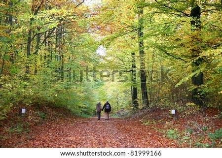 Couple in autumn in the countryside  in denmark