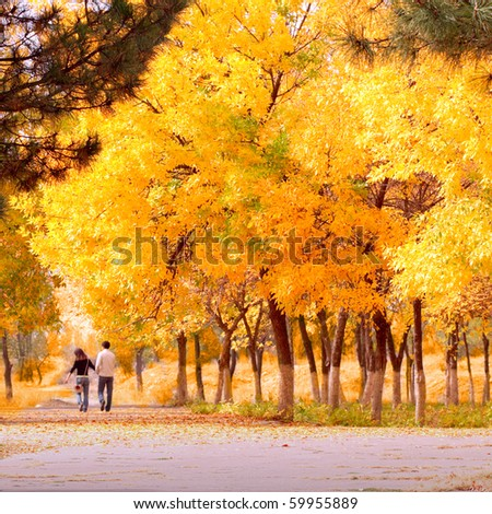 couple in autumn park - stock photo