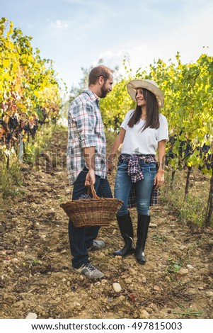 Couple in casual clothes walking with basket of grapes in vineyard during harvest