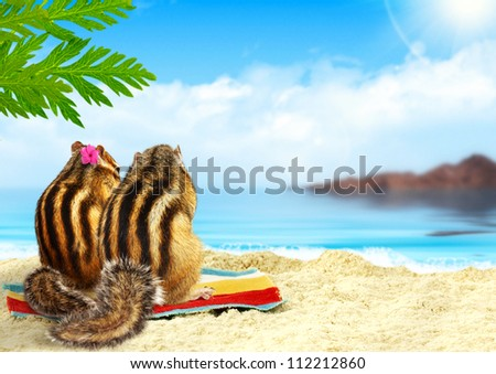 couple of chipmunks on the beach, honeymoon concept - stock photo