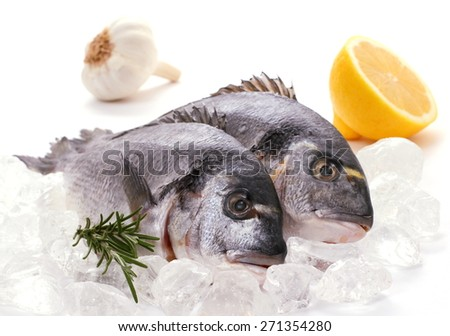 Couple of fresh gilthead, lemon, rosemary on ice, top isolated - stock photo