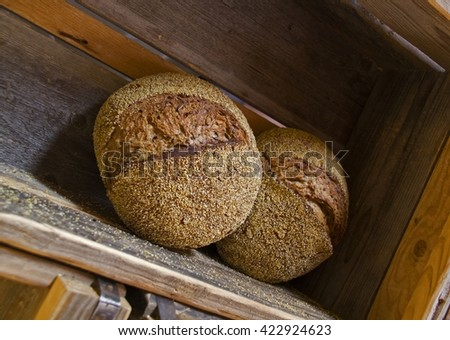 Couple of Fresh Rustic baked bread loafs at wooden shelf