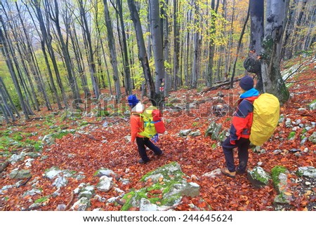Couple of hikers follow a winding path in the forest during autumn - stock photo
