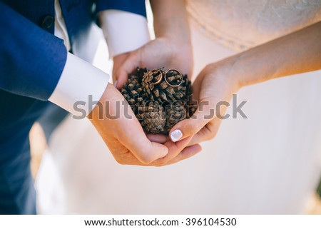 Couple Of Pine Cone In Hand
