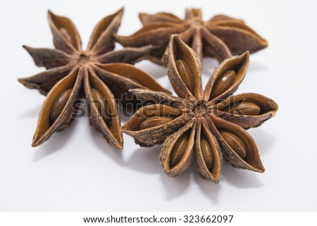 Couple of star anise on white