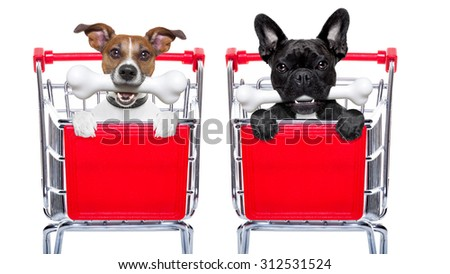 couple of two  dogs together  inside a shopping cart trolley , behind  a blank  empty banner or placard, with a bone in mouth , isolated on white background - stock photo
