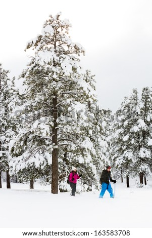 Couple Snowshoeing Through A Beautiful Winter Landscape - stock photo