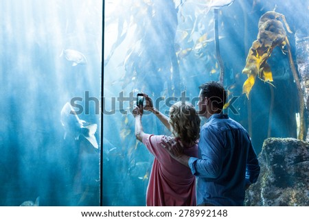 Couple taking photo of fish in the tank at the aquarium - stock photo
