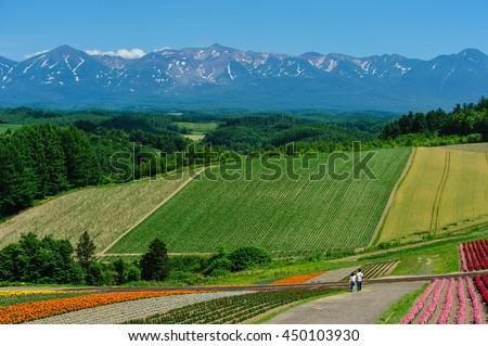 Couple walk with flower field and several color at Shikisai-no-oka, famous attraction in Biei, Hokkaido, Japan - stock photo