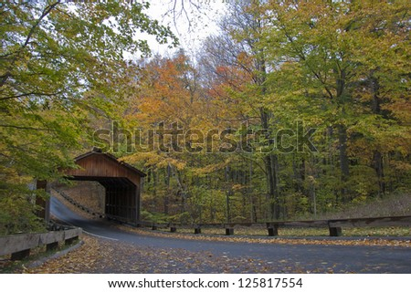 Covered bridge in autumnal forest - stock photo