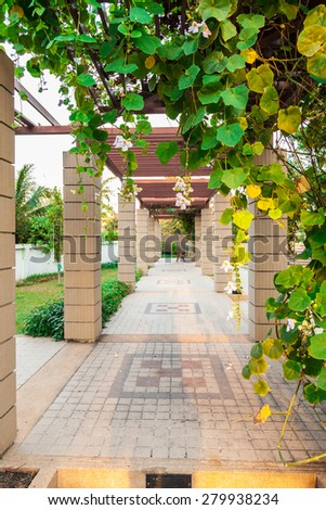 Covered walkway in the park with plant - stock photo