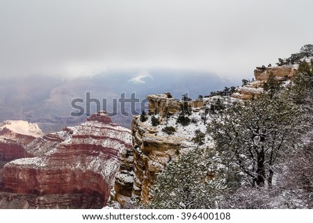covered with coniferous forest steep slope of the cliff at the Grand Canyon in winter - stock photo