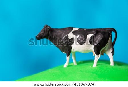 Cow - stock photo