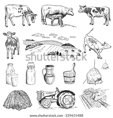 cow and milk. . hand drawn set of pictures - stock photo