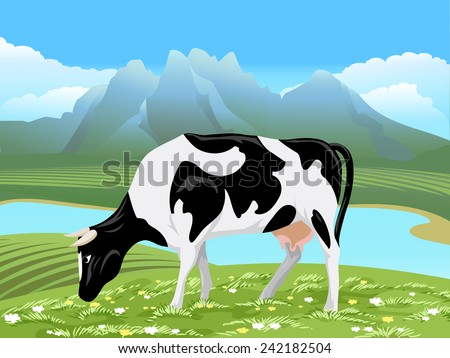Cow and rural meadow landscape. Cow grazing on green field with flowers near the river - stock photo