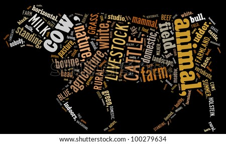 Cow info-text graphics and arrangement concept (word cloud) - stock photo
