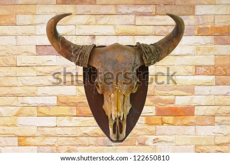 Cow skull on brick wall background - stock photo