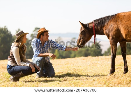 cowboy and cowgirl playing with foal in the ranch - stock photo