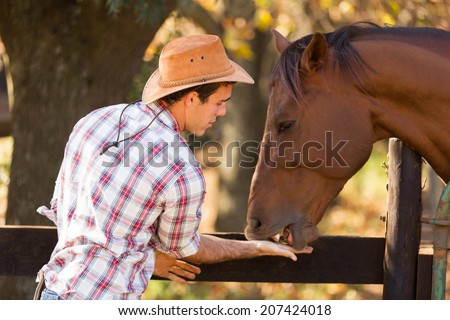 cowboy feeding a horse out of hand - stock photo