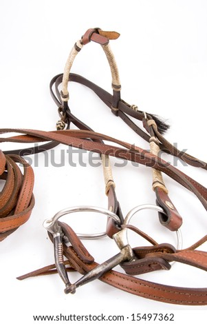 Cowboy gear - western riding equipment, Headstall - stock photo