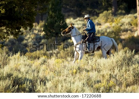 Cowboy on a Paint Horse in Early Morning Light - stock photo